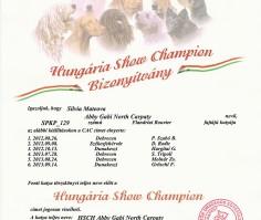 Champ HU